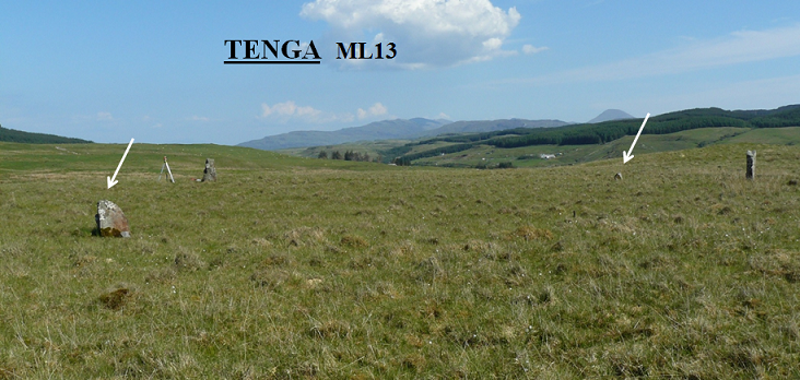 1. Tenga View - Resized