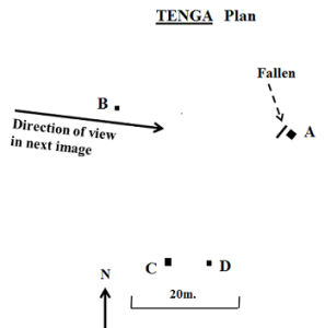 2. Tenga Plan - Resized