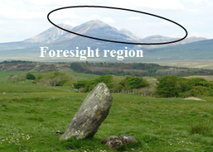 3. foresight region